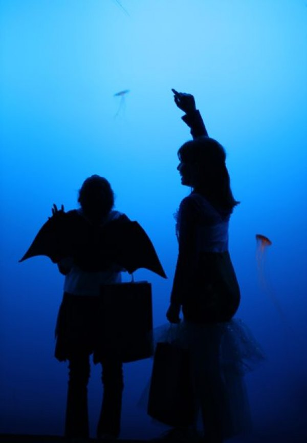 A costumed bat enjoys the jellyfish