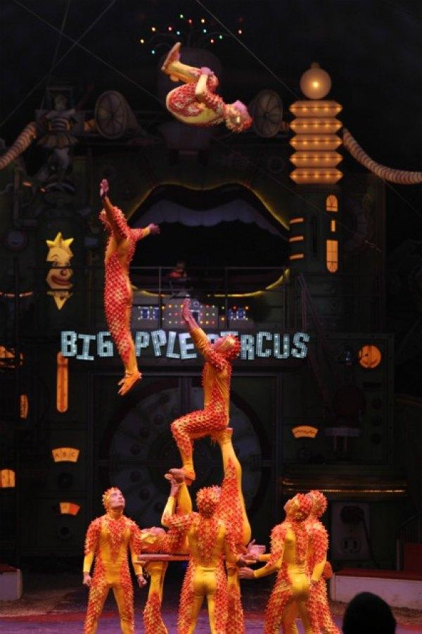 Shandong Acrobats