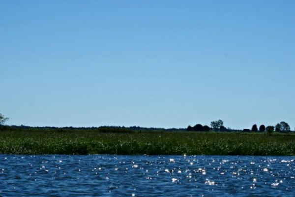 Teaming with waterfowl and wildlife the Scarborough Marsh can be traveresed on foot or by canoe.