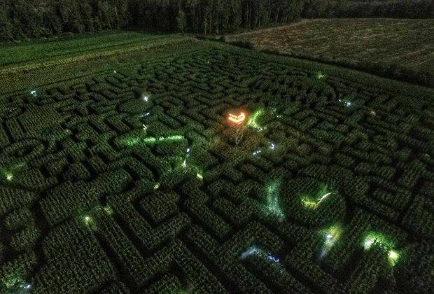 Best Corn Maze On Long Island