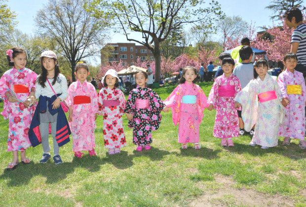 Where To See Cherry Blossoms In The Lower Hudson Valley